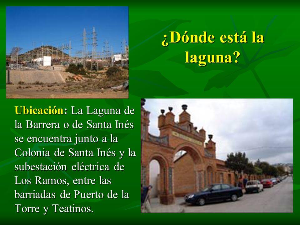 ¿Dónde está la laguna? Ubicación: La Laguna de la Barrera o de Santa Inés se encuentra junto a la Colonia de Santa Inés y la subestación eléctrica de
