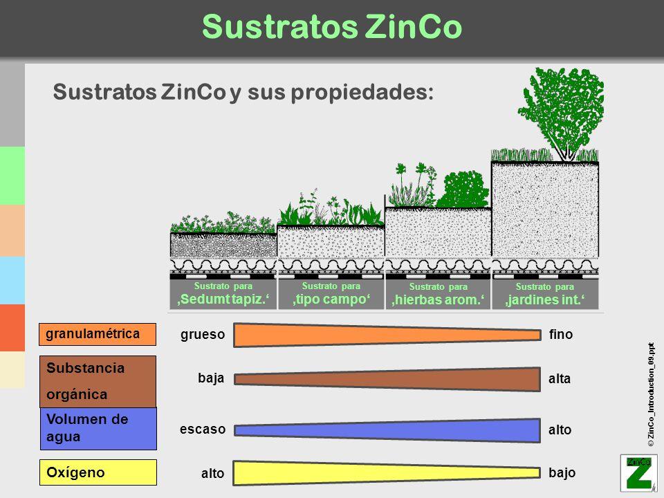 © ZinCo_Introduction_09.ppt Sustratos ZinCo granulamétrica Oxígeno Sustrato para Sedumt tapiz. Sustrato para tipo campo Sustrato para hierbas arom. Su