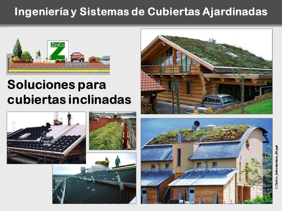 © ZinCo_Introduction_09.ppt Soluciones para cubiertas inclinadas Ingeniería y Sistemas de Cubiertas Ajardinadas