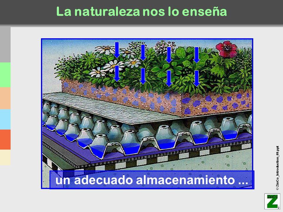 © ZinCo_Introduction_09.ppt Base técnica de cubiertas Existen múltiples formas de cubiertas...