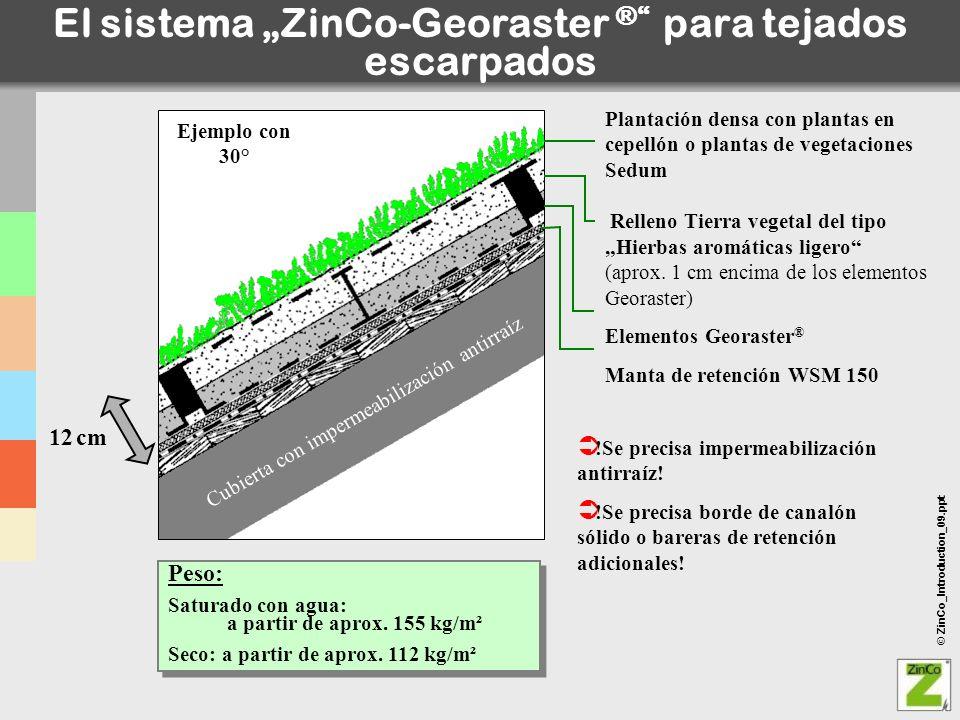 © ZinCo_Introduction_09.ppt El sistema ZinCo-Georaster ® para tejados escarpados !Se precisa impermeabilización antirraíz! !Se precisa borde de canaló