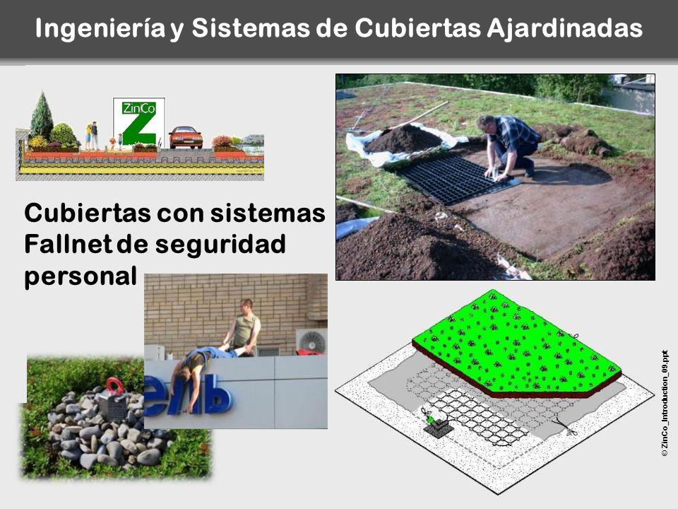 © ZinCo_Introduction_09.ppt Cubiertas con sistemas Fallnet de seguridad personal Ingeniería y Sistemas de Cubiertas Ajardinadas
