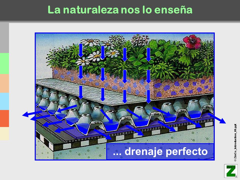 © ZinCo_Introduction_09.ppt La naturaleza nos lo enseña... drenaje perfecto