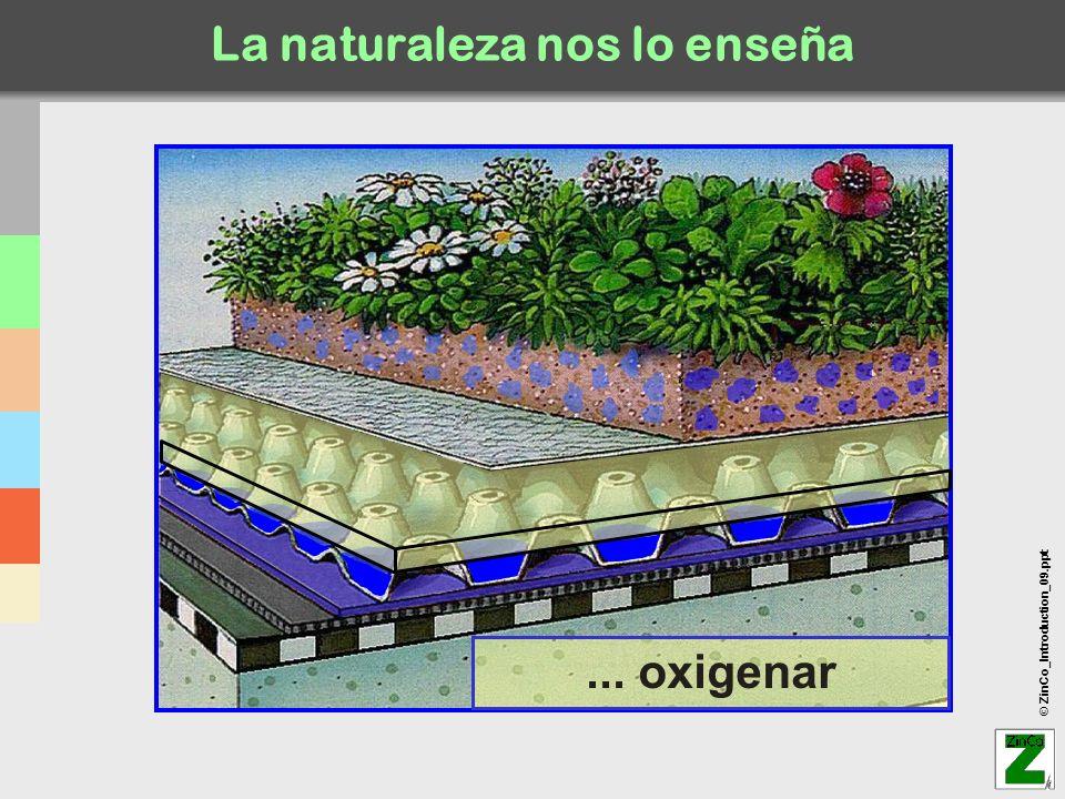© ZinCo_Introduction_09.ppt Zonas de recreo Ingeniería y Sistemas de Cubiertas Ajardinadas