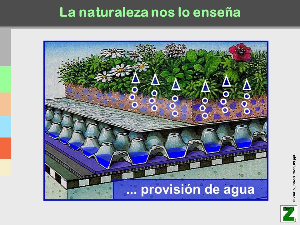 © ZinCo_Introduction_09.ppt La naturaleza nos lo enseña... provisión de agua
