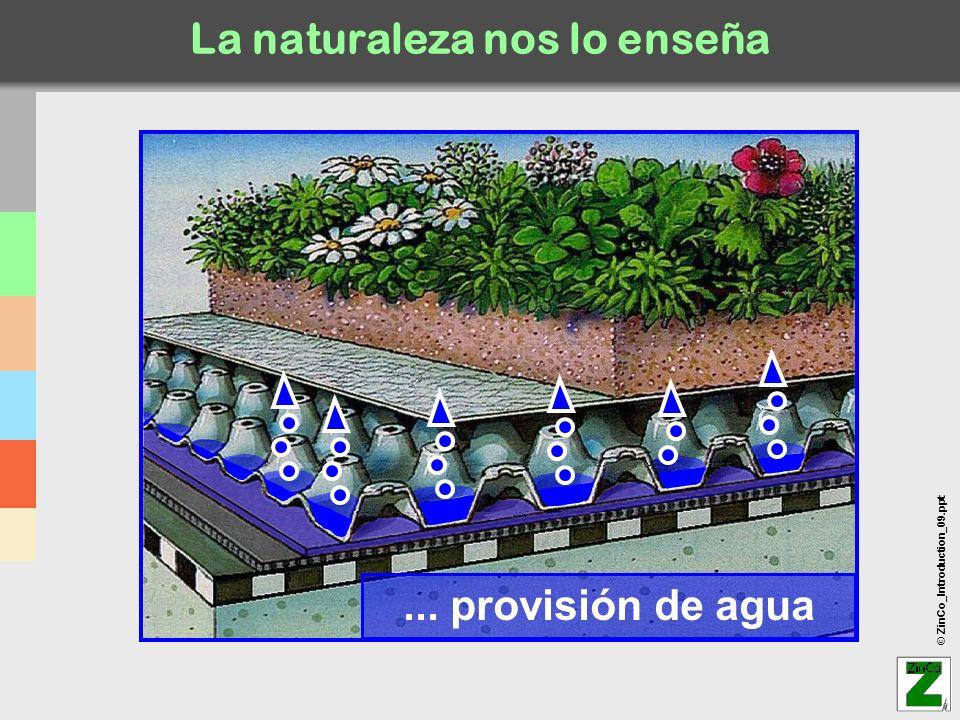 © ZinCo_Introduction_09.ppt Aeropuerto de Ibiza