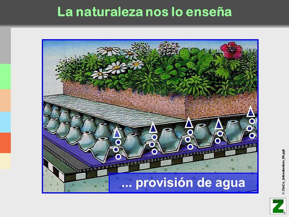 © ZinCo_Introduction_09.ppt Cubierta extensiva plana xxx En caso que la impermeabilización NO es antirraíz lámina antirraíz WSF 40.