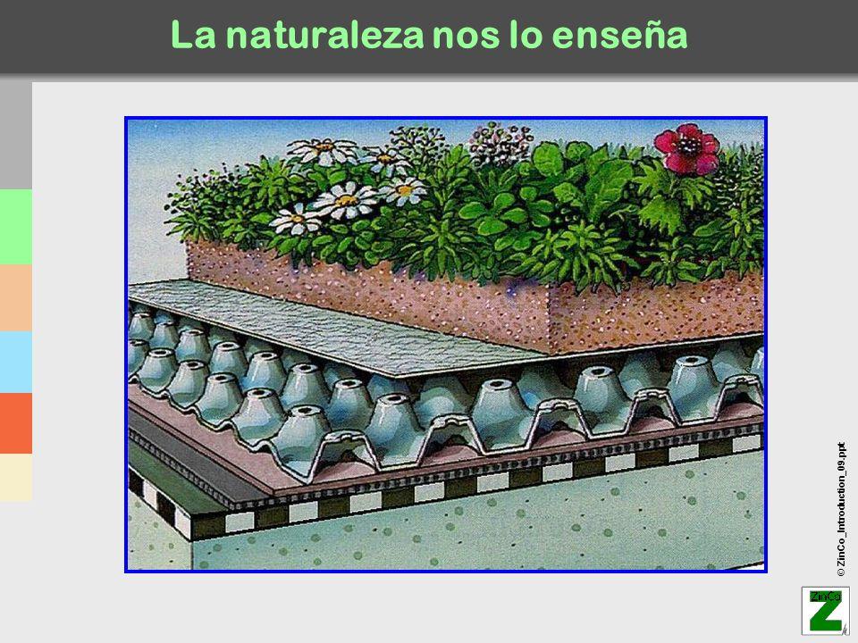 © ZinCo_Introduction_09.ppt El sistema ZinCo-Georaster ® para tejados escarpados !Se precisa impermeabilización antirraíz.