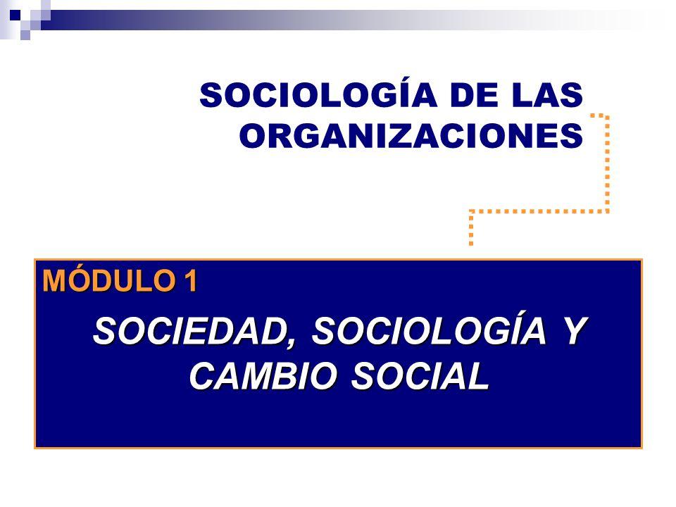 SOCIOLOGÍA DE LAS ORGANIZACIONES MÓDULO 1 SOCIEDAD, SOCIOLOGÍA Y CAMBIO SOCIAL