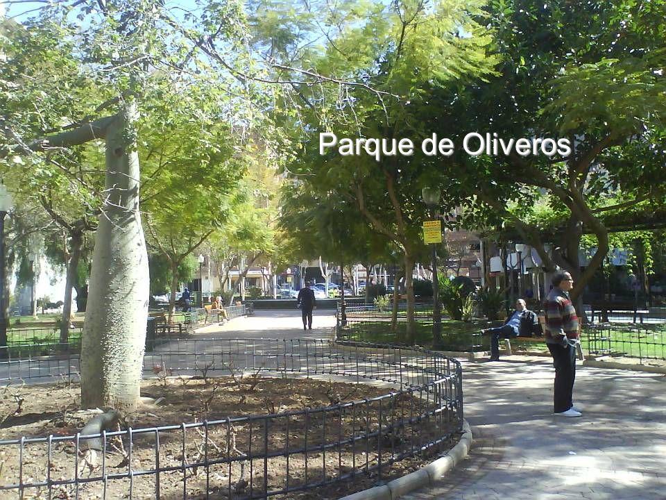 Avenida de García Lorca, en un día Domingo