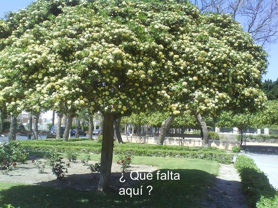 Fuente de Los Pueblos. Detrás: Plaza de Las Velas.