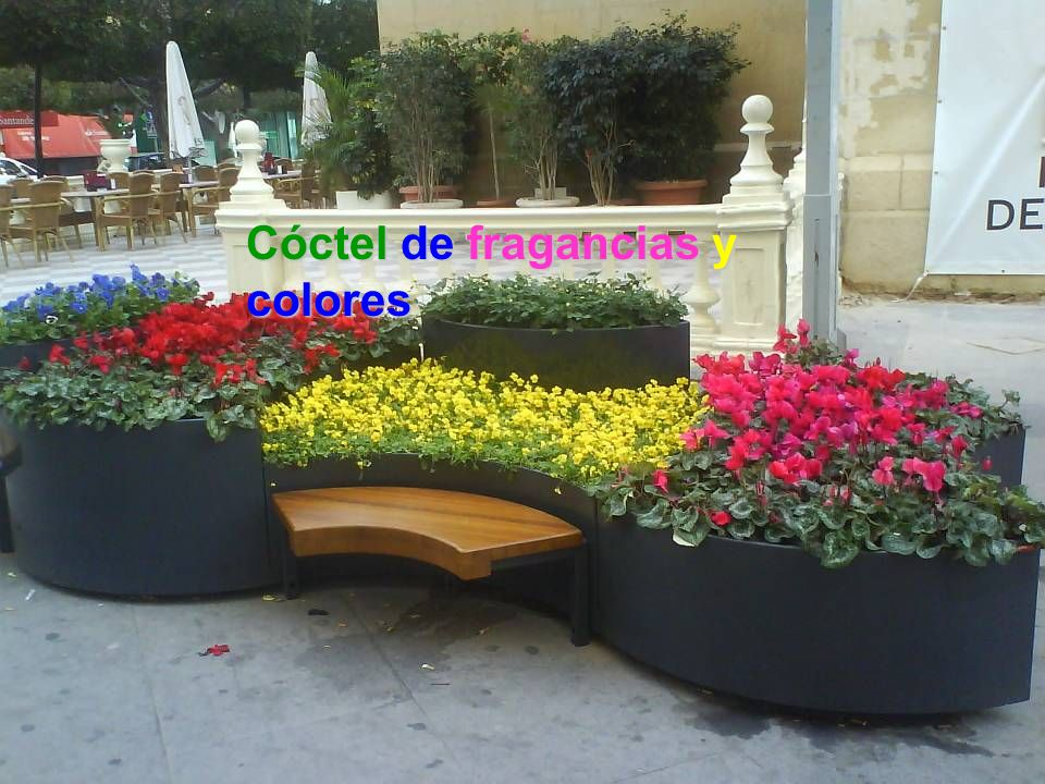 Cóctel de fragancias y colores