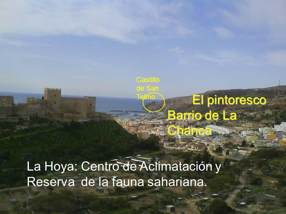 Almería se despierta cuando el Sol, enamorado, besa en su mejilla a La Alcazaba. Alcazaba. (Paco Urrutia)