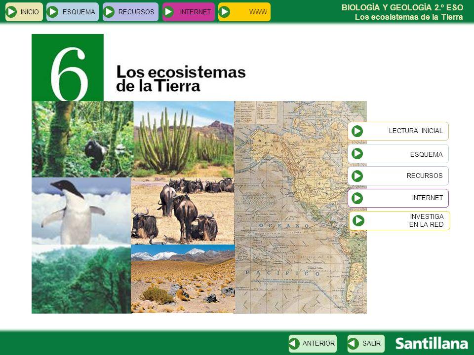 BIOLOGÍA Y GEOLOGÍA 2.º ESO Los ecosistemas de la Tierra INICIOESQUEMARECURSOSINTERNET LECTURA INICIAL ESQUEMA RECURSOS INTERNETSALIRANTERIOR INVESTIG