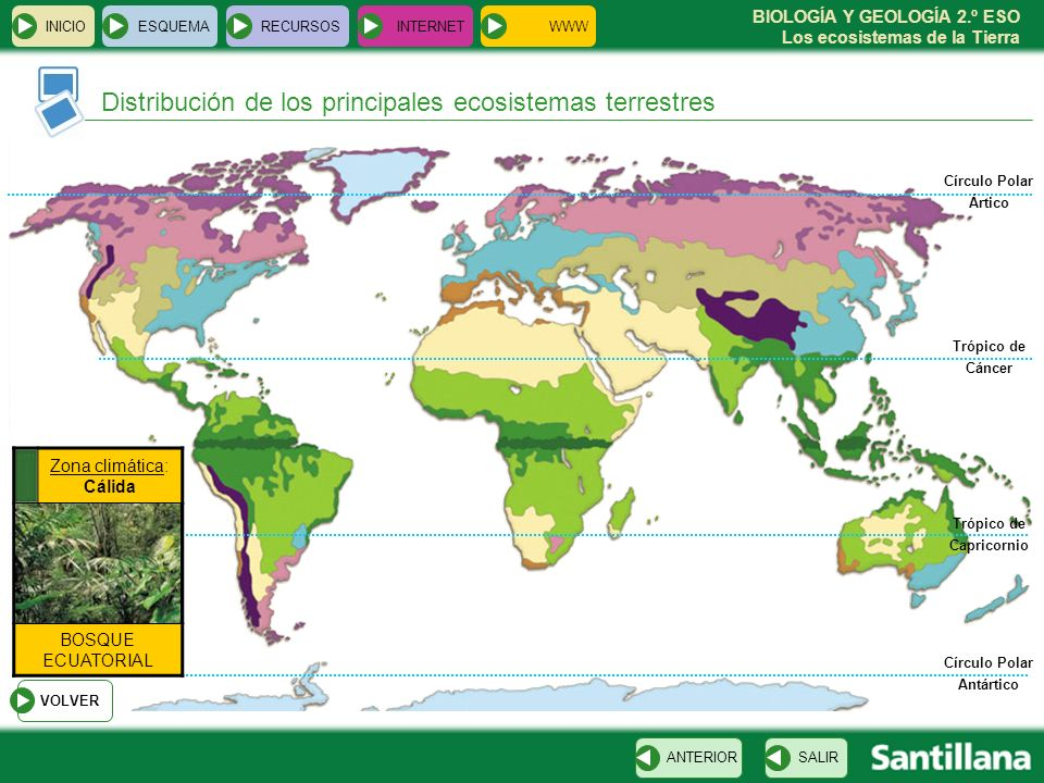 BIOLOGÍA Y GEOLOGÍA 2.º ESO Los ecosistemas de la Tierra INICIOESQUEMARECURSOSINTERNET SALIRANTERIOR Trópico de Cáncer Trópico de Capricornio VOLVER Z
