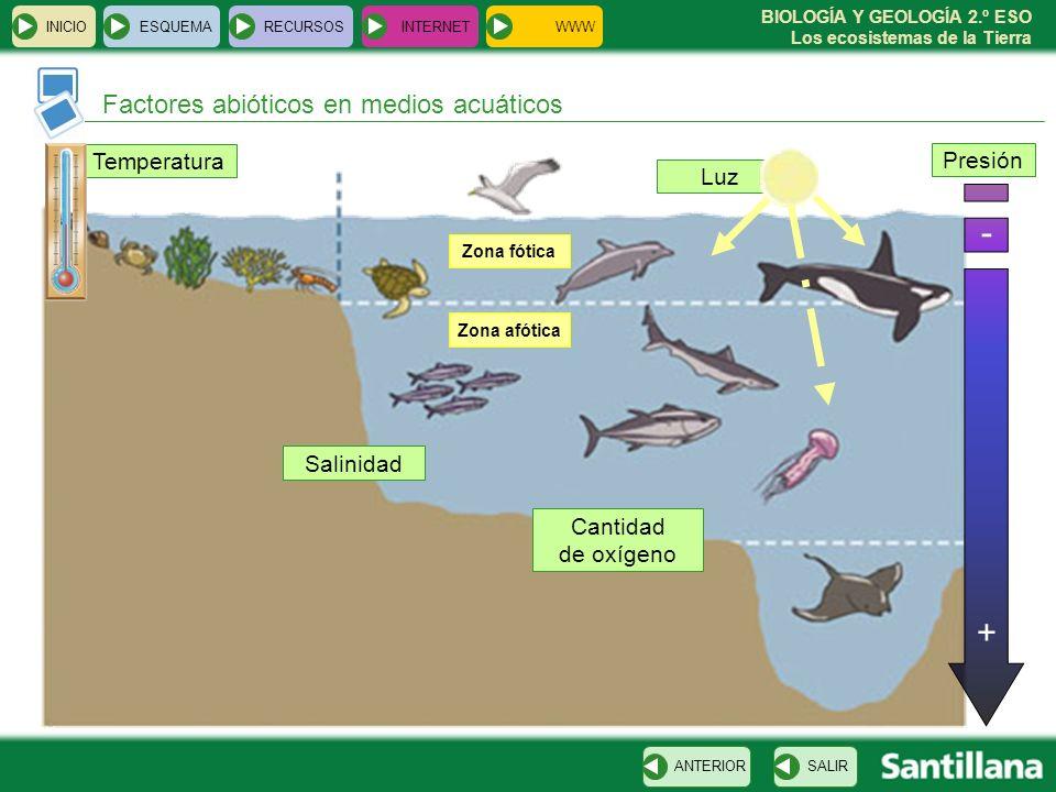 BIOLOGÍA Y GEOLOGÍA 2.º ESO Los ecosistemas de la Tierra Temperatura Factores abióticos en medios acuáticos INICIOESQUEMARECURSOSINTERNET SALIRANTERIO
