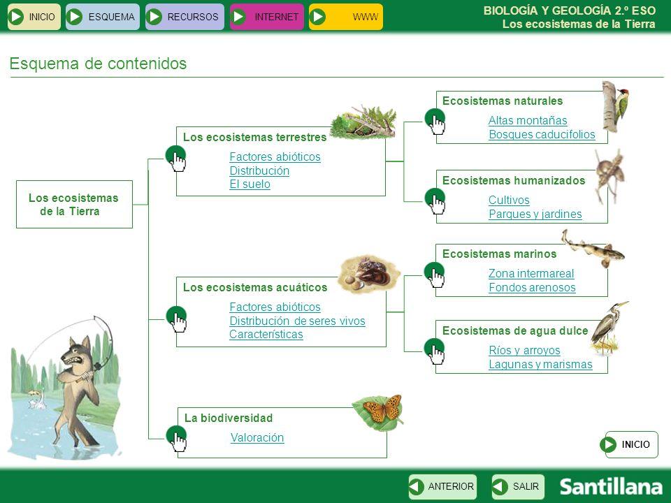 BIOLOGÍA Y GEOLOGÍA 2.º ESO Los ecosistemas de la Tierra Esquema de contenidos Los ecosistemas de la Tierra INICIOESQUEMARECURSOSINTERNET Los ecosiste