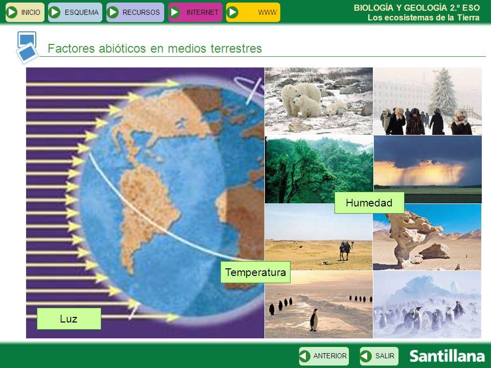 BIOLOGÍA Y GEOLOGÍA 2.º ESO Los ecosistemas de la Tierra Factores abióticos en medios terrestres INICIOESQUEMARECURSOSINTERNET SALIRANTERIOR Luz Tempe