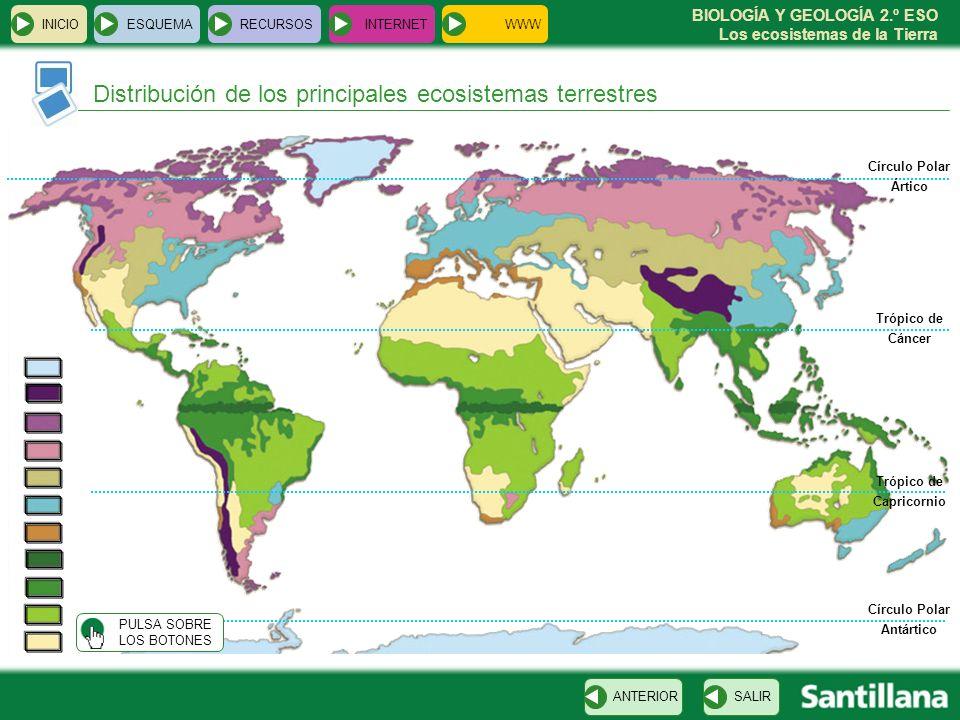 BIOLOGÍA Y GEOLOGÍA 2.º ESO Los ecosistemas de la Tierra Distribución de los principales ecosistemas terrestres INICIOESQUEMARECURSOSINTERNET SALIRANT