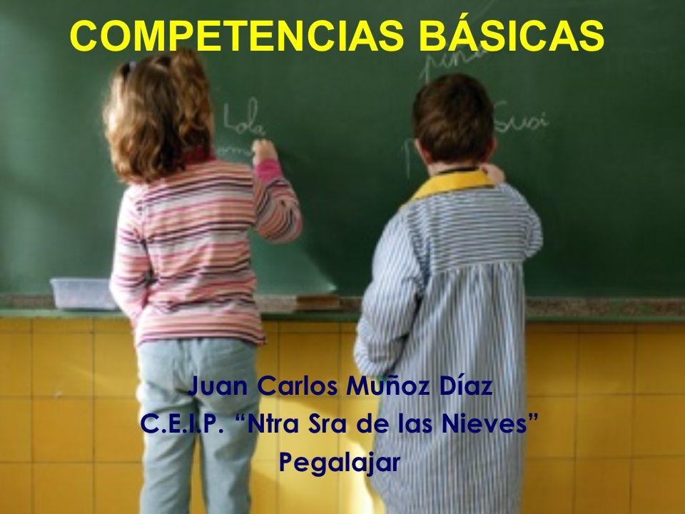 COMPETENCIAS BÁSICAS: (ORIGEN) El Consejo Europeo de Lisboa (2000) pone en marcha grupos de trabajo de expertos con el fin de: Identificar los objetivos comunes de los sistemas educativos europeos.