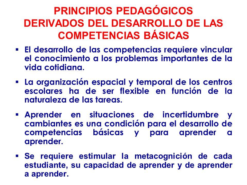 PRINCIPIOS PEDAGÓGICOS DERIVADOS DEL DESARROLLO DE LAS COMPETENCIAS BÁSICAS Se ha de favorecer la cooperación entre iguales.