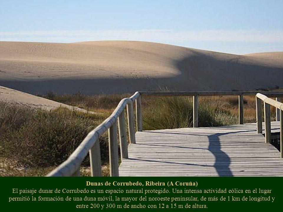 Dunas de Corrubedo, Ribeira (A Coruña) El paisaje dunar de Corrubedo es un espacio natural protegido. Una intensa actividad eólica en el lugar permiti