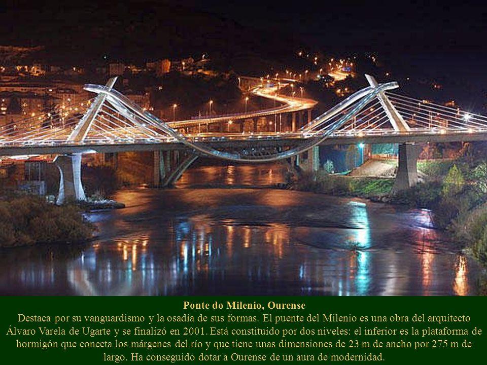 Ponte do Milenio, Ourense Destaca por su vanguardismo y la osadía de sus formas. El puente del Milenio es una obra del arquitecto Álvaro Varela de Uga