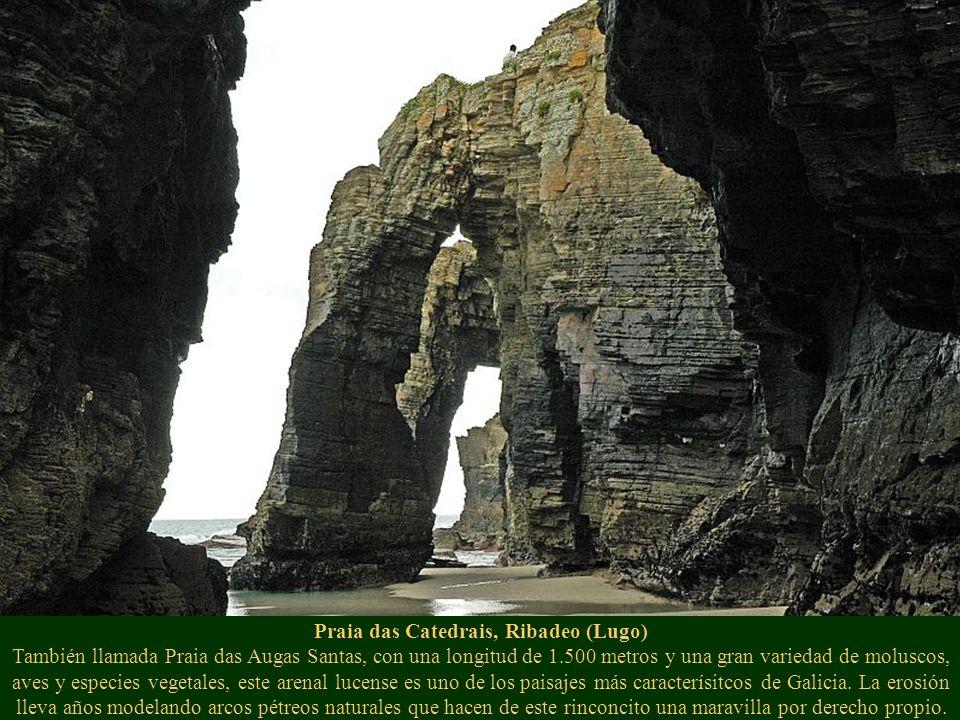 Praia das Catedrais, Ribadeo (Lugo) También llamada Praia das Augas Santas, con una longitud de 1.500 metros y una gran variedad de moluscos, aves y e