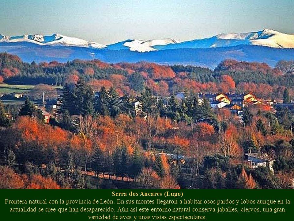 Serra dos Ancares (Lugo) Frontera natural con la provincia de León. En sus montes llegaron a habitar osos pardos y lobos aunque en la actualidad se cr