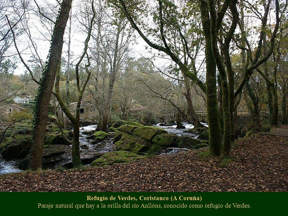 Refugio de Verdes, Coristanco (A Coruña) Paraje natural que hay a la orilla del río Anllóns, conocido como refugio de Verdes.