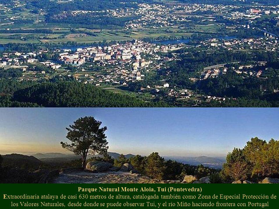 Parque Natural Monte Aloia, Tui (Pontevedra) Extraordinaria atalaya de casi 630 metros de altura, catalogada también como Zona de Especial Protección