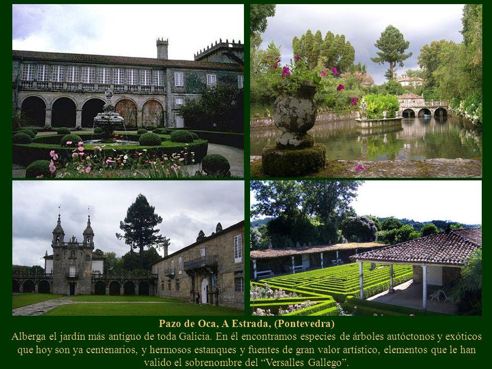 Pazo de Oca, A Estrada, (Pontevedra) Alberga el jardín más antiguo de toda Galicia. En él encontramos especies de árboles autóctonos y exóticos que ho