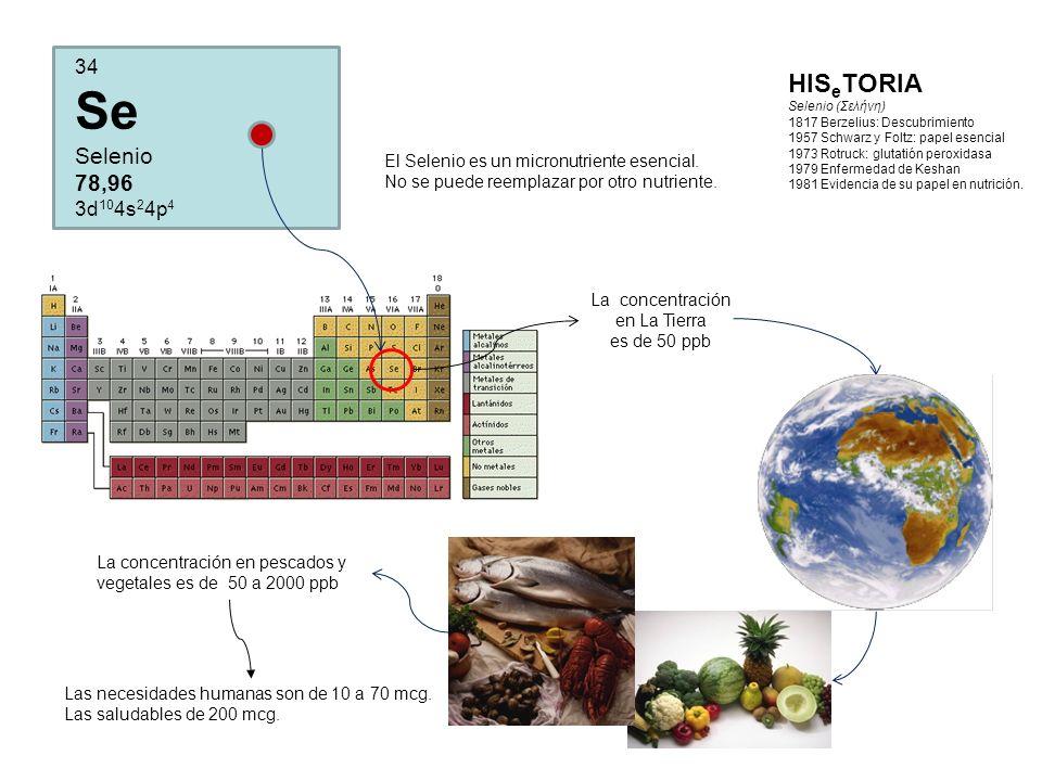 La concentración en La Tierra es de 50 ppb HIS e TORIA Selenio (Σελήνη) 1817 Berzelius: Descubrimiento 1957 Schwarz y Foltz: papel esencial 1973 Rotruck: glutatión peroxidasa 1979 Enfermedad de Keshan 1981 Evidencia de su papel en nutrición.