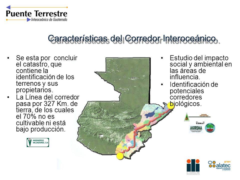 Características del Corredor Interoceánico. Se esta por concluir el catastro, que contiene la identificación de los terrenos y sus propietarios. La Lí
