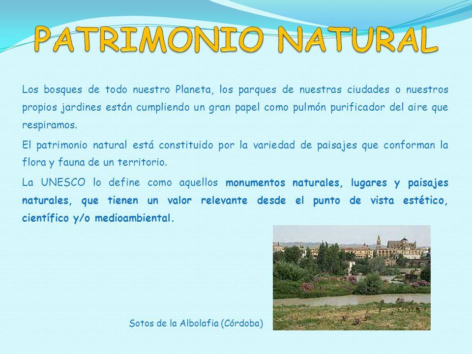 ELEMENTOS DEL PATRIMONIO NATURAL El patrimonio natural está constituido por Todos estos elementos reciben el nombre de RESERVAS DE LA BIOSFERA Monumentos naturalesParques nacionales Reservas naturales Parajes naturales Parques periurbanos Cuidemos Nuestro Planeta
