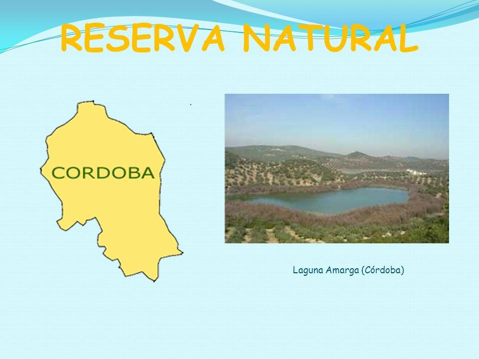 RESERVA NATURAL Laguna Amarga (Córdoba)