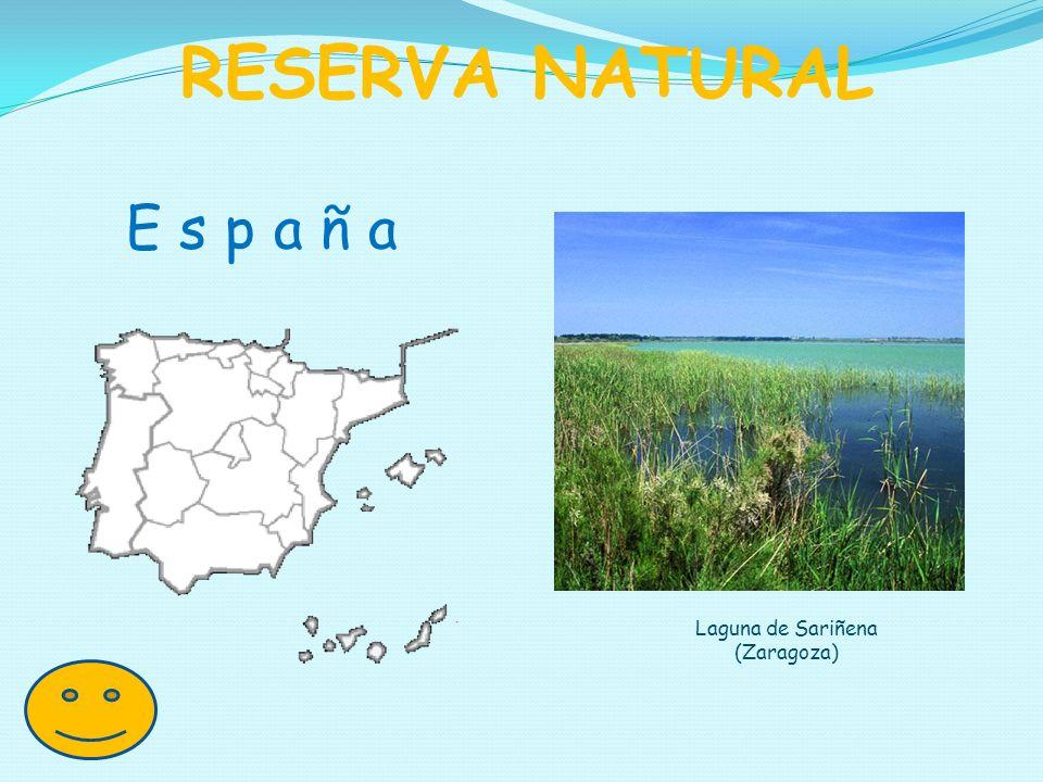E s p a ñ a RESERVA NATURAL Laguna de Sariñena (Zaragoza)