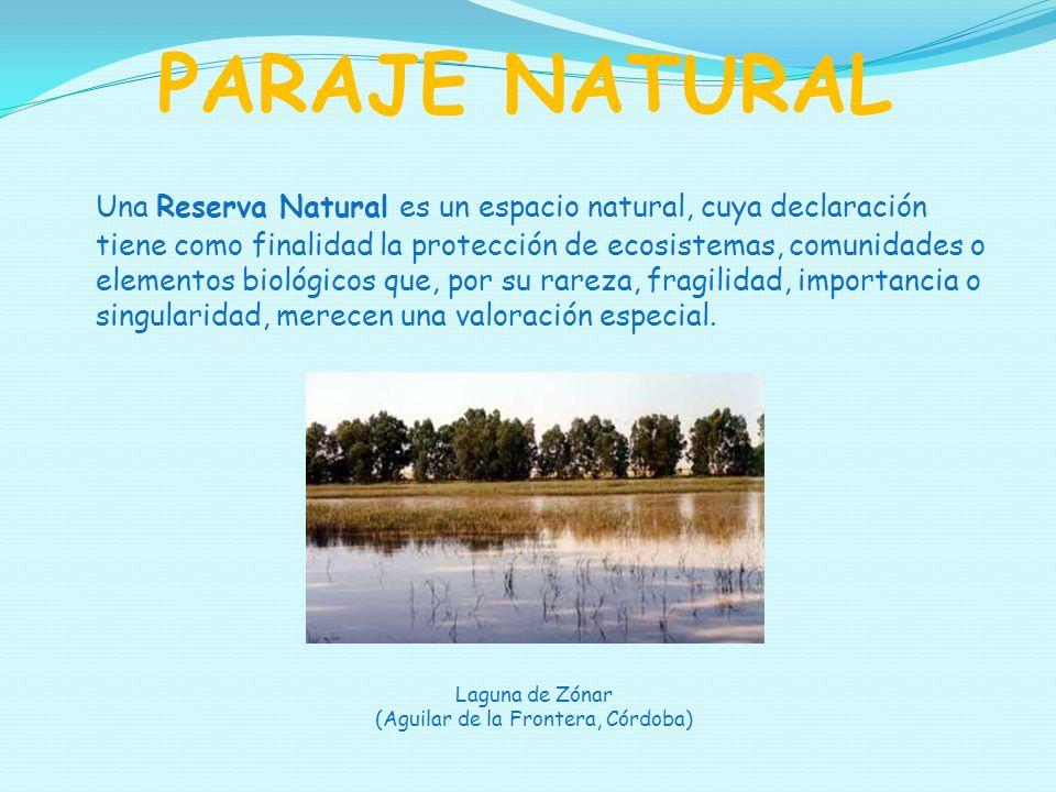 Una Reserva Natural es un espacio natural, cuya declaración tiene como finalidad la protección de ecosistemas, comunidades o elementos biológicos que, por su rareza, fragilidad, importancia o singularidad, merecen una valoración especial.