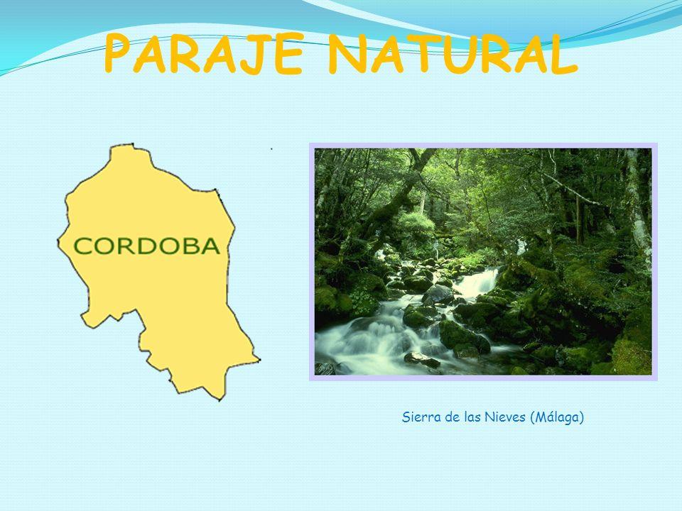 PARAJE NATURAL Sierra de las Nieves (Málaga)