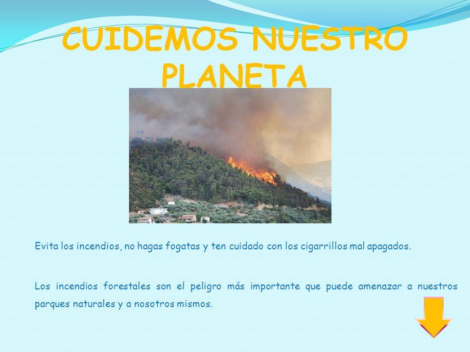 CUIDEMOS NUESTRO PLANETA Evita los incendios, no hagas fogatas y ten cuidado con los cigarrillos mal apagados. Los incendios forestales son el peligro