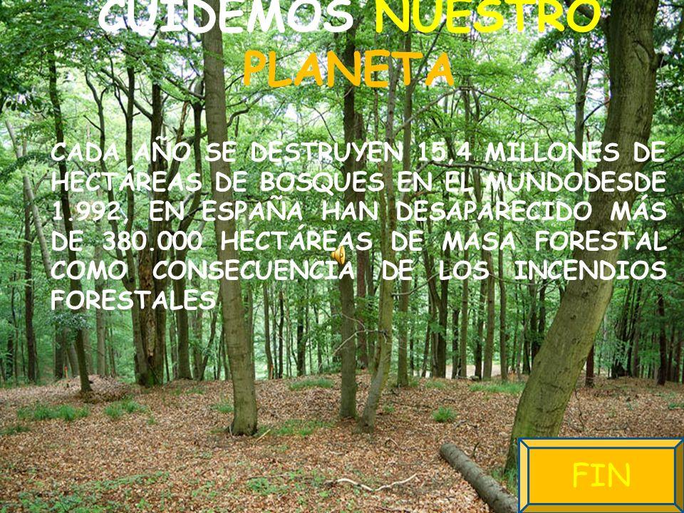 CUIDEMOS NUESTRO PLANETA CADA AÑO SE DESTRUYEN 15,4 MILLONES DE HECTÁREAS DE BOSQUES EN EL MUNDODESDE 1.992, EN ESPAÑA HAN DESAPARECIDO MÁS DE 380.000 HECTÁREAS DE MASA FORESTAL COMO CONSECUENCIA DE LOS INCENDIOS FORESTALES FIN