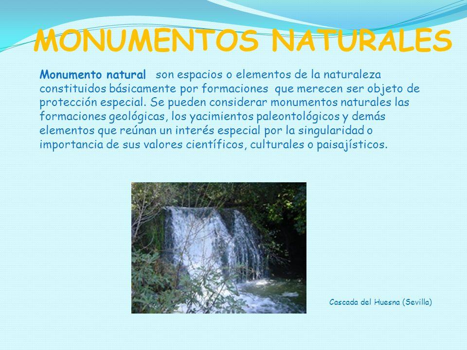 MONUMENTOS NATURALES Monumento natural son espacios o elementos de la naturaleza constituidos básicamente por formaciones que merecen ser objeto de pr