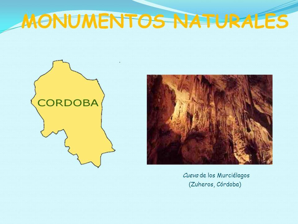 MONUMENTOS NATURALES Cueva de los Murciélagos (Zuheros, Córdoba)