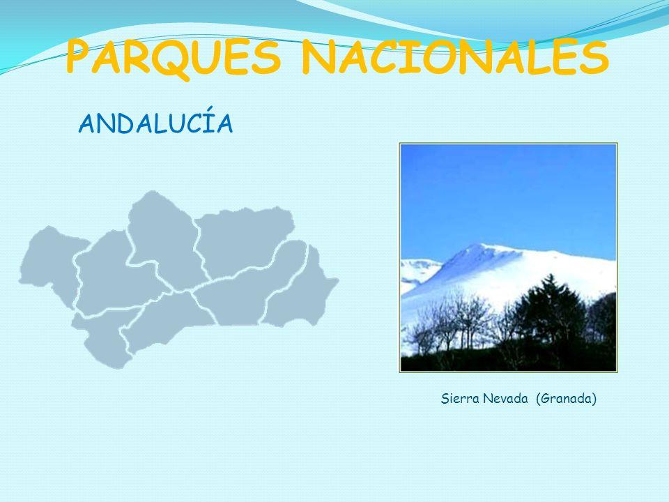 PARQUES NACIONALES ANDALUCÍA Sierra Nevada (Granada)