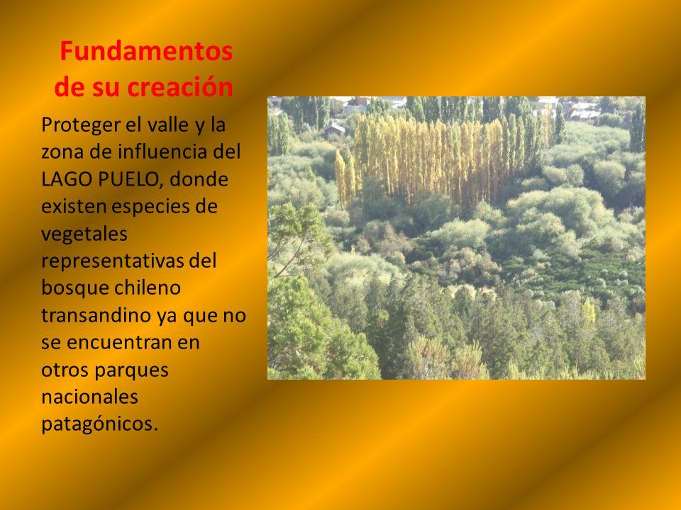 Lago Puelo UBICACIÓN: Noroeste de Chubut. HISTORIA DE SU CREACION: Originalmente fue creado en el año 1937 como Parque Nacional Los Alerces, recibiend