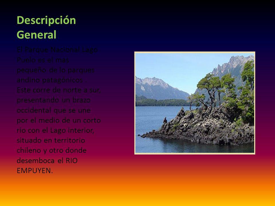 Fundamentos de su creación Proteger el valle y la zona de influencia del LAGO PUELO, donde existen especies de vegetales representativas del bosque chileno transandino ya que no se encuentran en otros parques nacionales patagónicos.