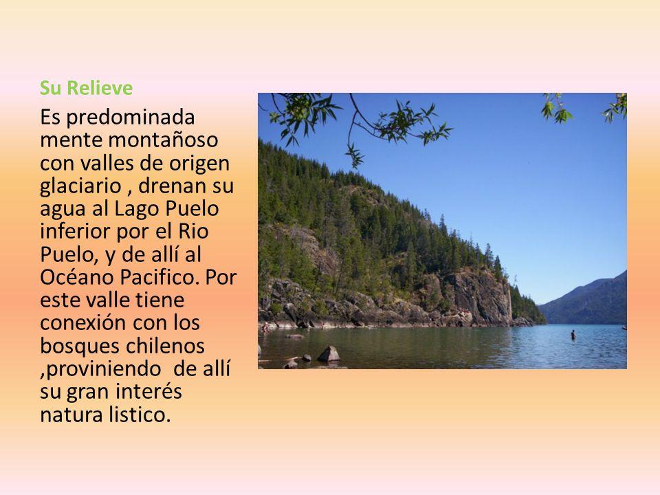 Descripción General El Parque Nacional Lago Puelo es el mas pequeño de lo parques andino patagónicos. Este corre de norte a sur, presentando un brazo