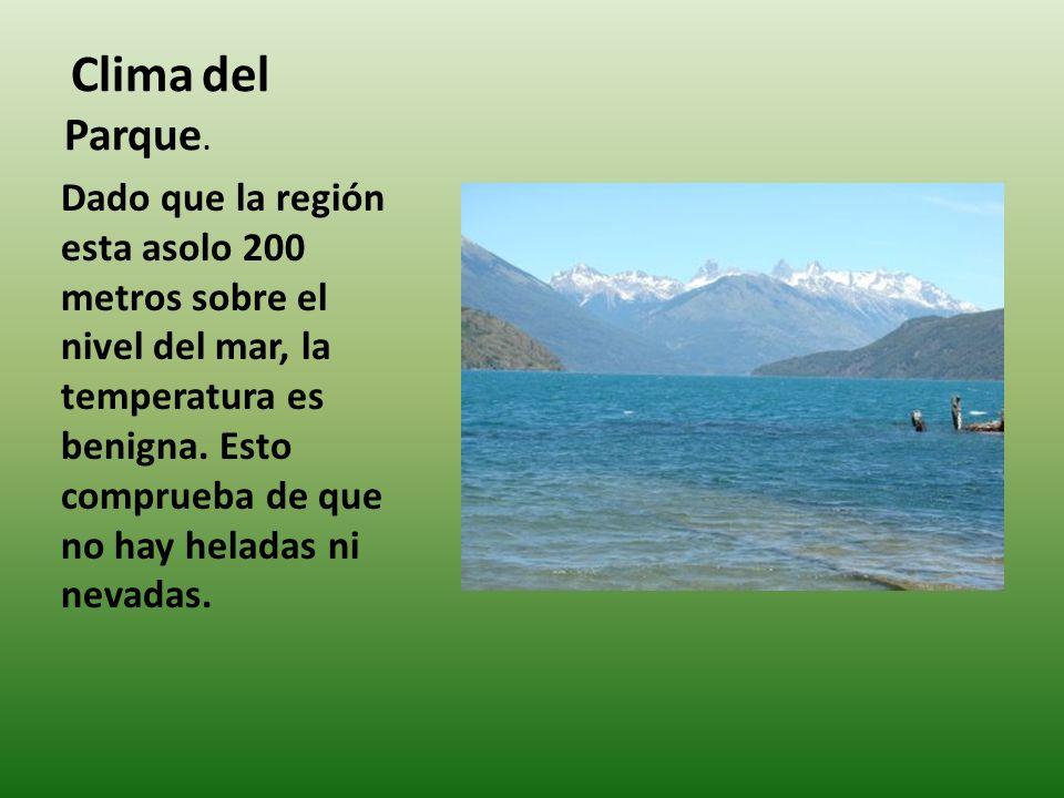Su Relieve Es predominada mente montañoso con valles de origen glaciario, drenan su agua al Lago Puelo inferior por el Rio Puelo, y de allí al Océano