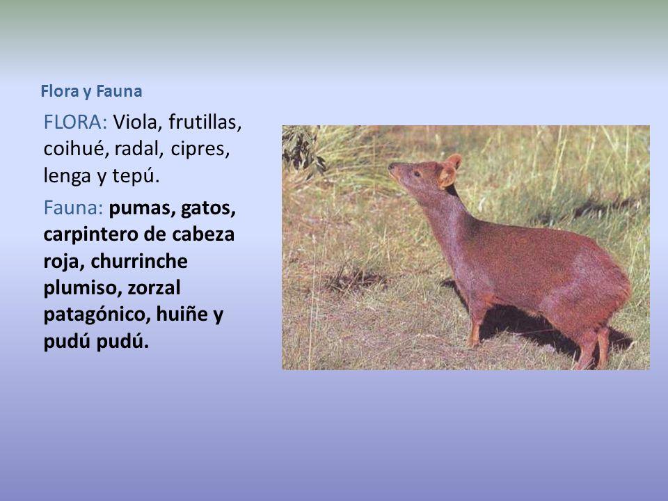 Especies vivientes del Parque.