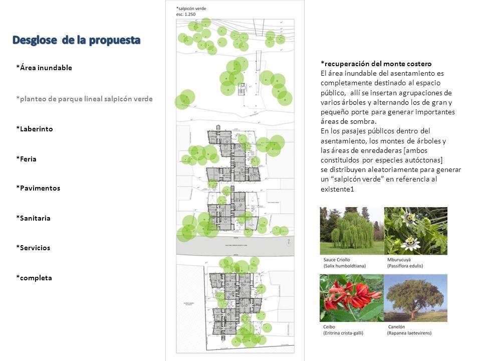 *recuperación del monte costero El área inundable del asentamiento es completamente destinado al espacio público, allí se insertan agrupaciones de var